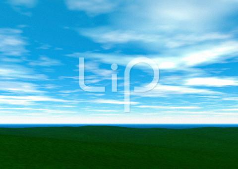 平原と明るい空と雲